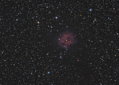 IC5146_red
